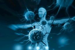 immunolog kliniczny kraków konsultacje online